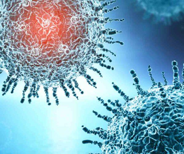 coronavirus nueva cepa